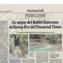 articolo-financial-time